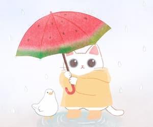 animal, cat, and umbrella image