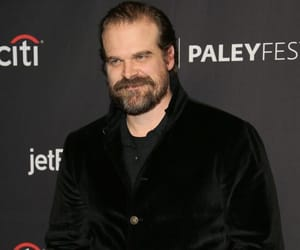 stranger things and david harbour image