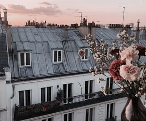 flowers, sunset, and paris image