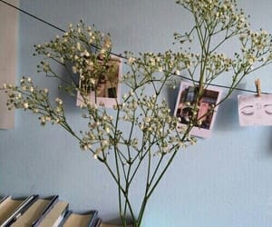 flowers, blue, and book image