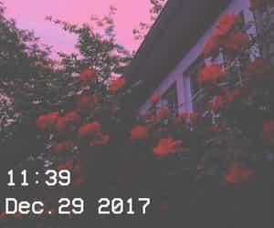 aesthetic image
