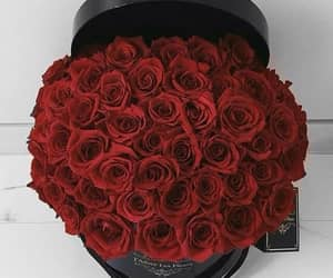 bouquet, red roses, and roses image