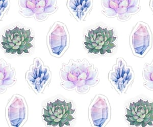 crystal, succulents, and white image