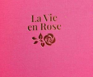 la vie en rose and tumblr image