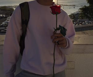 aesthetic, rose, and boy image