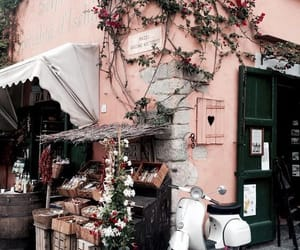 pink, travel, and flowers image