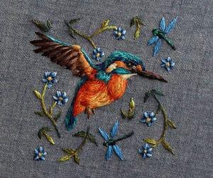 bird, fuzzy, and woodland image