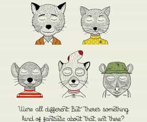 movie quote, wes anderson, and fantastic mr fox image