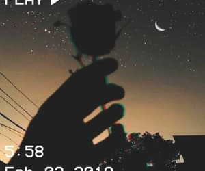 aesthetic, night, and rose image