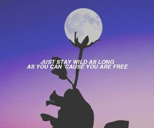 aesthetic, moon, and quotes image