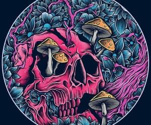 pink, skeleton, and skull image