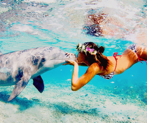 dolphin, girl, and summer image