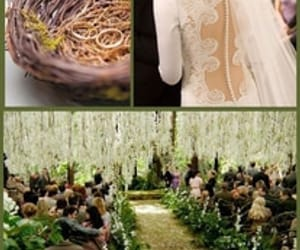 dress, location, and twilight image