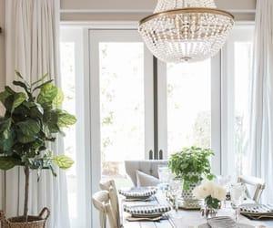 art, decor, and plants image