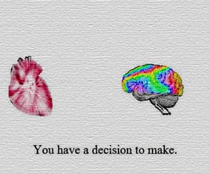 gif, heart, and brain image