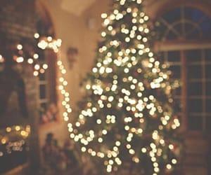 lights, winter, and xmas image