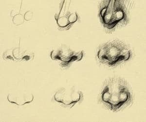 nose, drawing, and art image