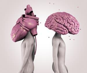 gif, cerebro, and animado image