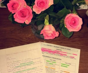 biology, pink, and flower image