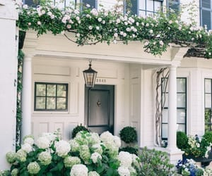 house, flowers, and white image