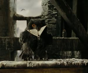 owl, black, and harry potter image