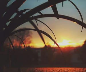 sunset, beautifull, and sundown image
