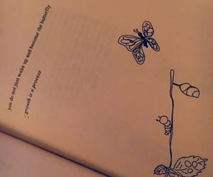 books, butterfly, and follow image