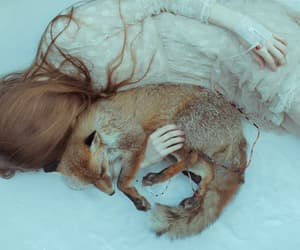 fox, girl, and pale image