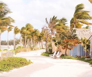 nassau, baja, and bahamas image