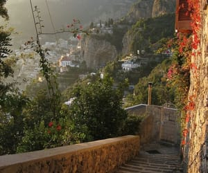travel, flowers, and italy image