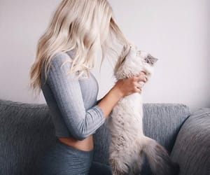 blonde, cat, and girl image