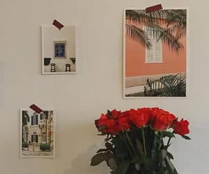 alternative, roses, and flowers image
