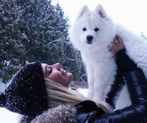 blonde, dog, and fashion image
