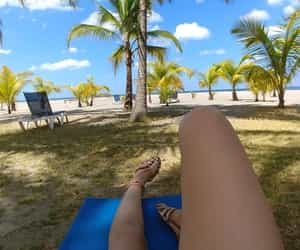 beach, palm trees, and relax image