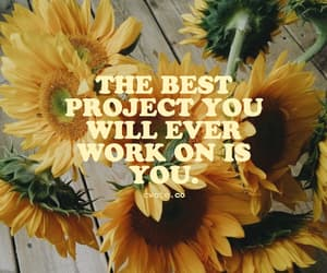quotes, sunflower, and project image