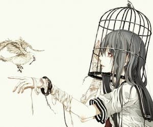 anime, bird, and cage image