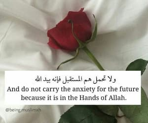 islam, life, and quotes image