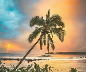 beach, rainbow, and beautiful image