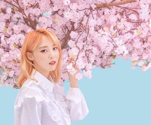 moonbyul, mamamoo, and kpop image
