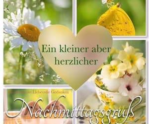wunsche, nachmittag, and deutsch image