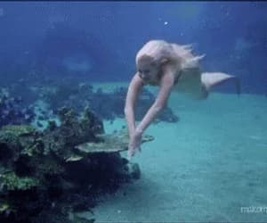 gif, mermaid, and ocean image