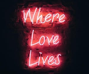 where love lives image