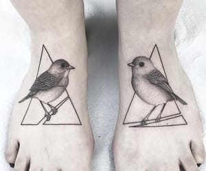 aesthetic, birds, and foot image