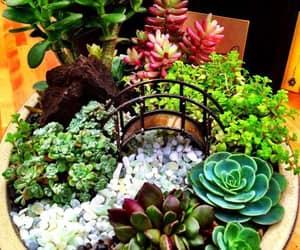 beautiful, diy, and garden image