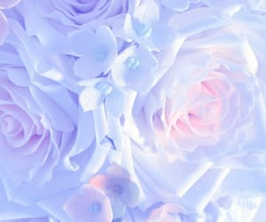 aesthetic, beauty, and pastel image