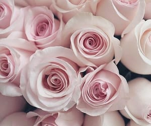bouquet, flowers, and pink roses image