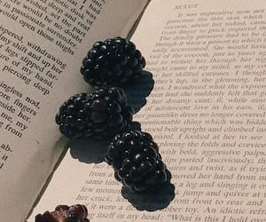 book, aesthetic, and blackberries image