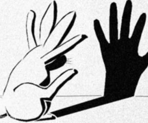 bunny, shadow, and funny image