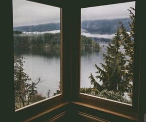 cottage, scenery, and forest image