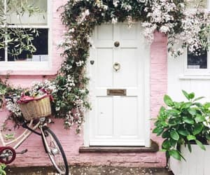 home, pink, and spring image